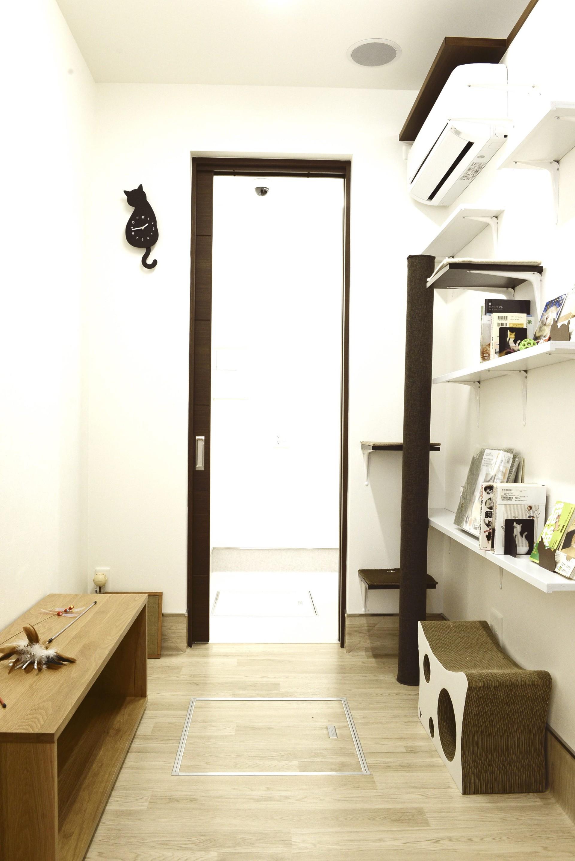 猫小動物専用待合室、診察室