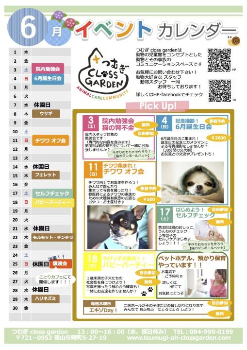 6月イベントカレンダー完成
